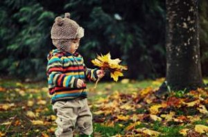 осенний период, простуда осенью, избежать простуды, укрепить иммунитет